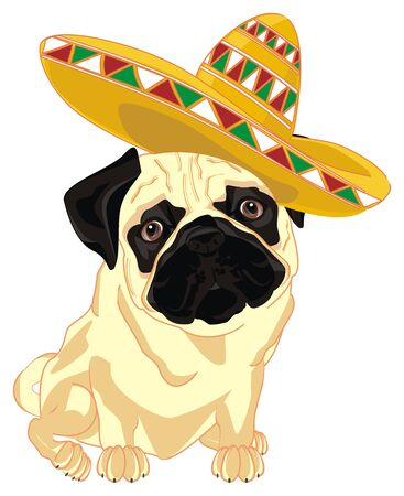 pug and Mexico