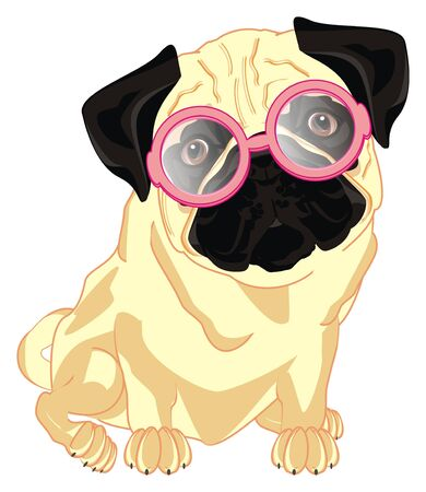 pug in pink glasses sit