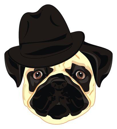 pug in black hat