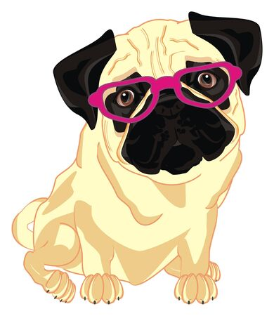 pug in pink glasses