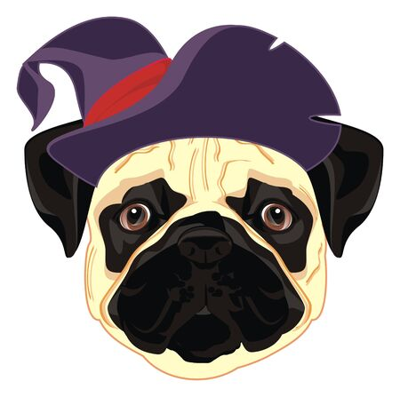 pug in halloweens hat Stock Photo