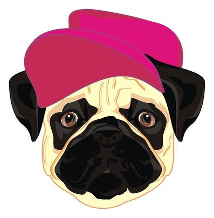 pug in pink hat Фото со стока