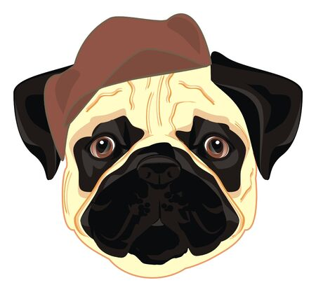 pug in brown hat