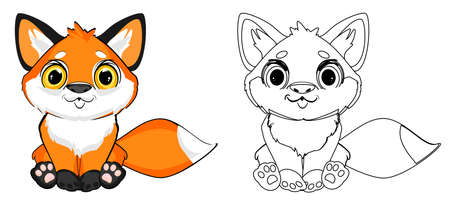 colored and coloring foxes