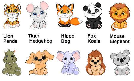 find animals