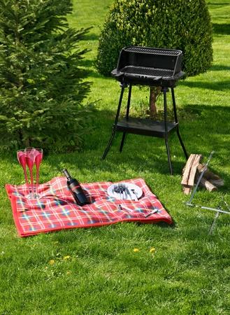 vetical: Prepar�ndose para hacer picnic en hierba verde con barbacoa
