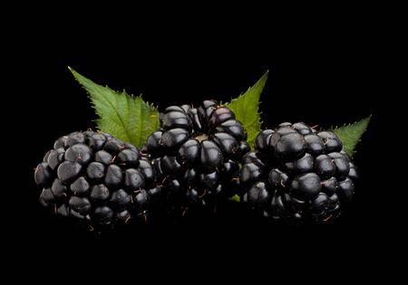 Blackberry fruit closeup isolated on black background