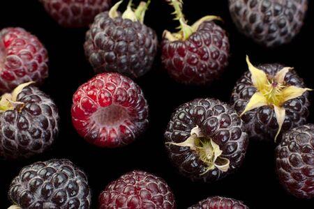 Cumberland fruit Hybrid raspberry and blackberry background Stok Fotoğraf