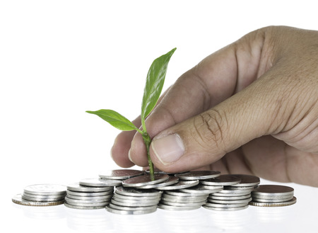 Planting tree on pile coins with hand on white background photo