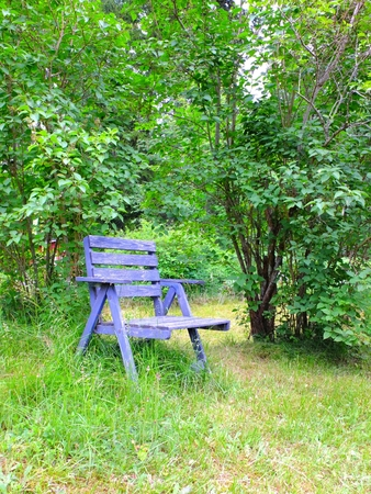 antik: An old rustic blue chair in garden. Overgrown plants. Stock Photo