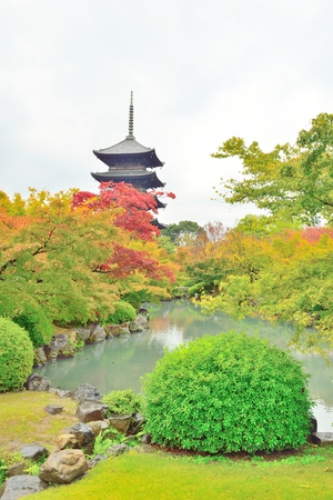 storied: Five storied pagoda and autumn leaves at Toji temple in Kyoto, Japan