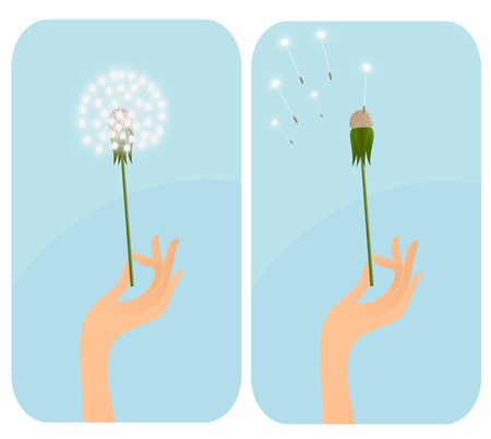 Female hand with dandelion. Vector-Illustration Vector
