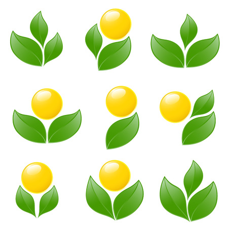 Set of logos - plant. Vector-Illustration Vector