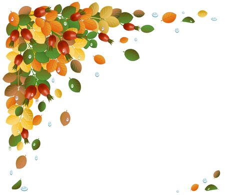 Autumn leaves with rose-hips, background. Vector-Illustration Stock Vector - 10313723