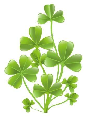 Clover leafs Stock Vector - 12031064
