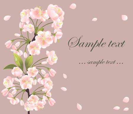 Background with sakura tree Vector