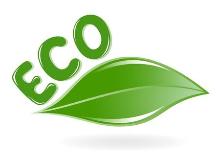 Leaf eco, icona verde Archivio Fotografico - 12928421