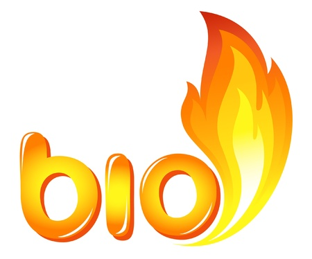 Bio sign with fire flames Vector