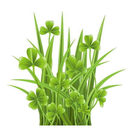 Green grass with clover Stock Vector - 12928321