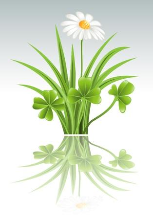 Prato verde con fiori di trifoglio e camomilla Archivio Fotografico - 12992028