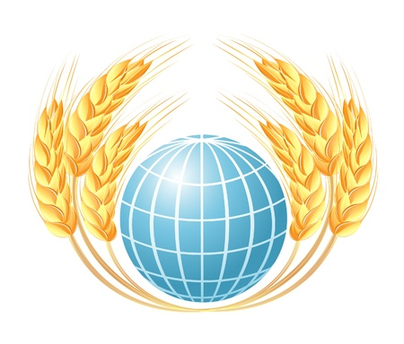 Abstract globe with wheat ears Stock Vector - 14008483