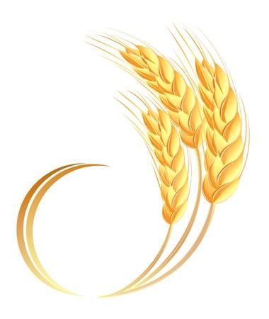 ceda: Espigas de trigo icono Vectores