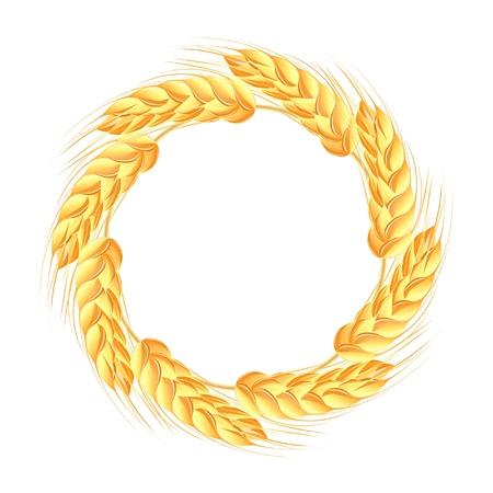 espigas: Corona de espigas de trigo