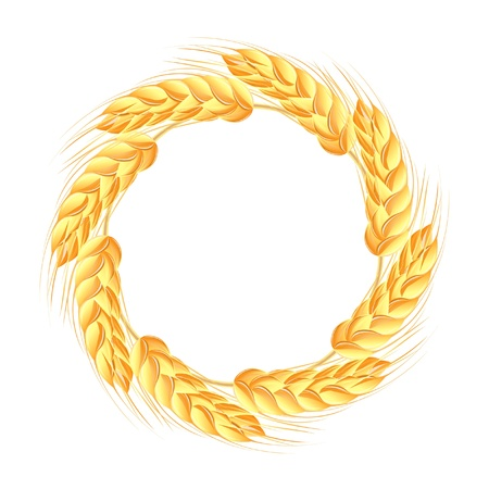 wheat isolated: Wreath of wheat ears