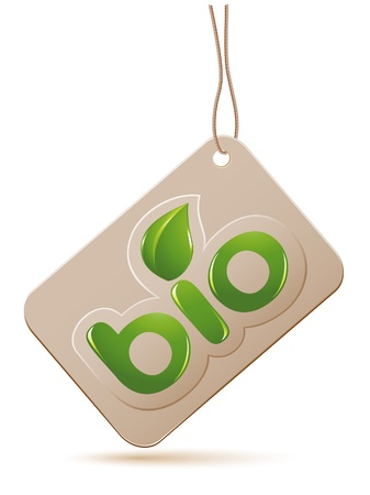 Label bio sign with leafs Vector