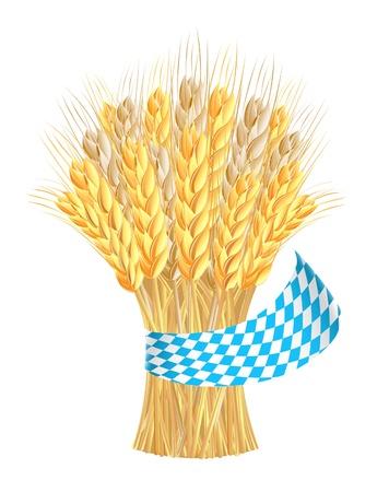 Snop kłosy pszenicy z wstążką w kolorach Bawarii