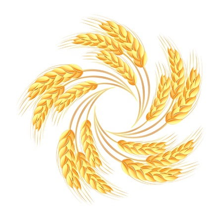 Wheat ears icon Stock Vector - 15124610