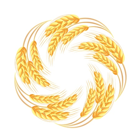flour mill: Wheat ears icon Illustration