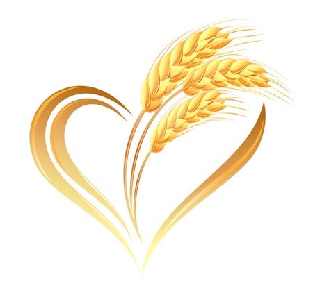 wheat crop: Orejas trigo Icono abstracto con elemento coraz�n