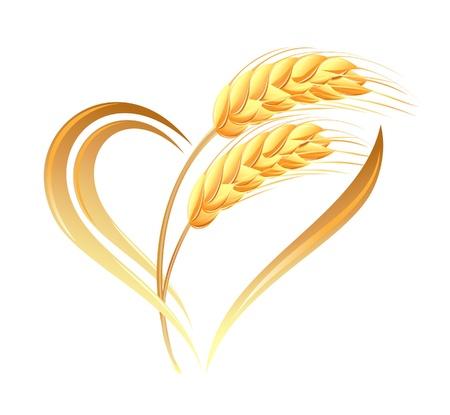 cosecha de trigo: Orejas trigo Icono abstracto con elemento coraz�n