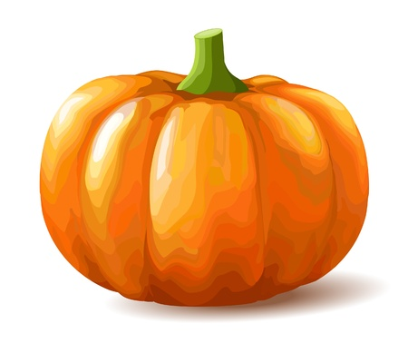 diet cartoon: Pumpkin on white background
