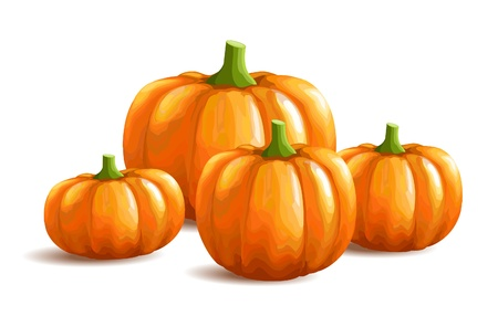 Bunch of pumpkins on white background Stock Vector - 15356983
