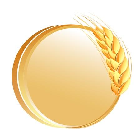 cultivo de trigo: Bot�n con icono de trigo orejas Vectores