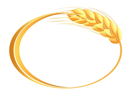 corn flour: Wheat ears icon Illustration