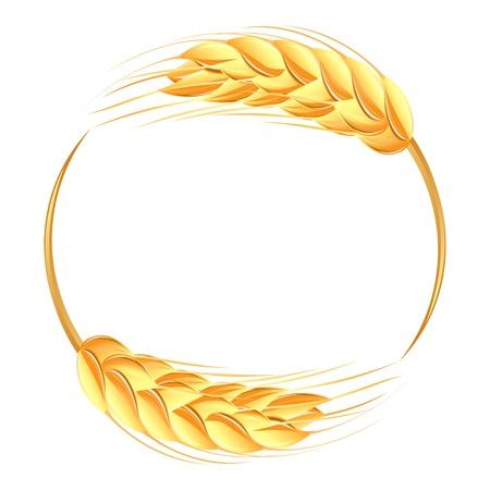 spikes: Espigas de trigo icono Vectores