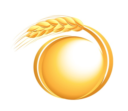 plant seed: Wheat ears icon Illustration