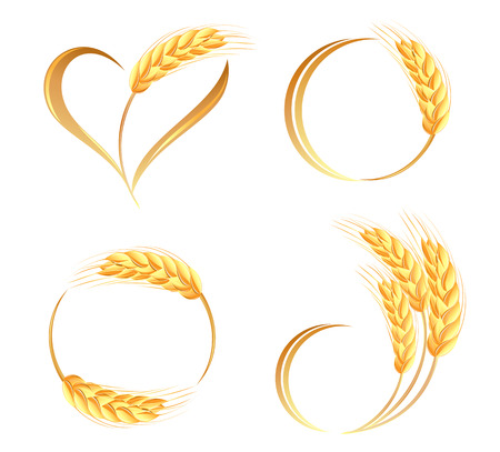ears: Abstract wheat ears icons