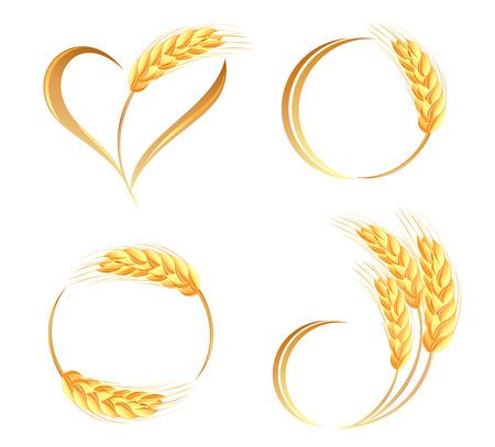 espiga de trigo: Resumen oídos del trigo iconos