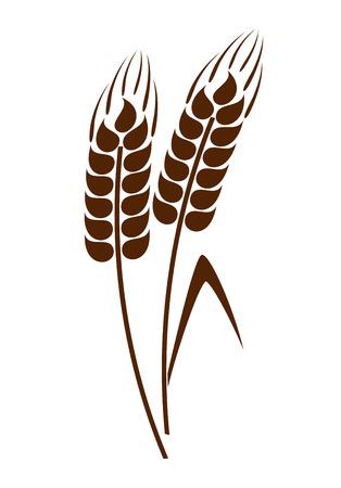 小麦の穂 写真素材 - 28645512