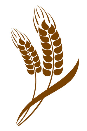Abstract wheat ears icon Vector