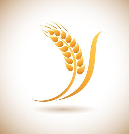 caryopsis: Wheat ears icon Illustration
