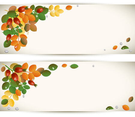 Autumn leaves with rose-hips, background Vector