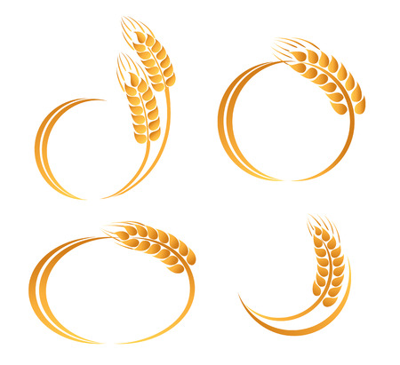 caryopsis: Set of abstract wheat ears icons