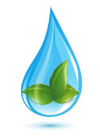 leaf water drop: Green leafs in drop