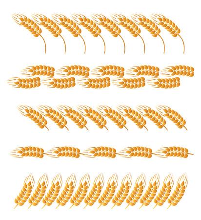 caryopsis: Set of wheat ears boards