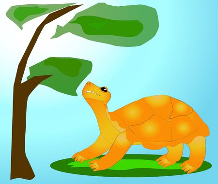 curiosity: The cheerful turtle with curiosity looks at a tree